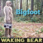 Waking Bear - Bigfoot
